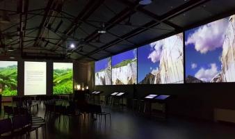 MuSA | Estate 2017 | Visite libere alla Collezione Permanente
